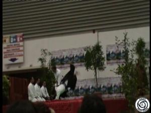 Festival dell'Oriente - Dimostrazione Aikido del Dojo Osaka - Marina di Carrara (MS) 31 Ottobre 2010